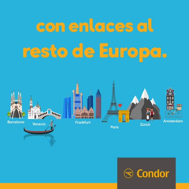Condor Kampagne Südamerika
